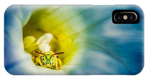 Metallic Green Bee In Blue Morning Glory IPhone Case