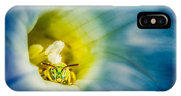 Metallic Green Bee In Blue Morning Glory IPhone Case