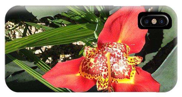 Mexican Orchid IPhone Case