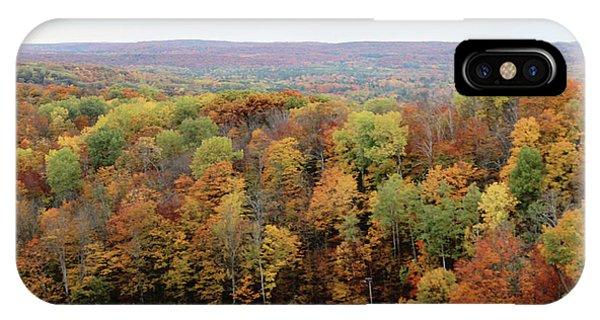 Michigan Autumn IPhone Case