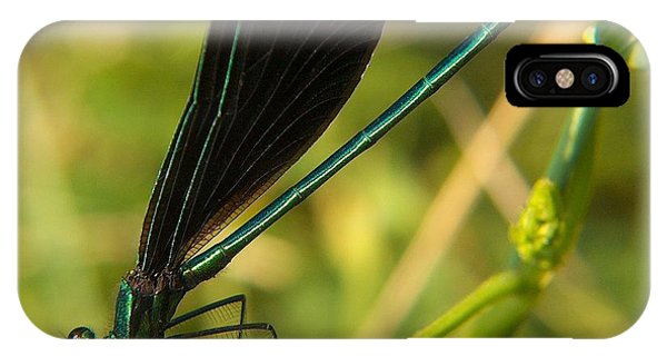 Michigan Damselfly IPhone Case