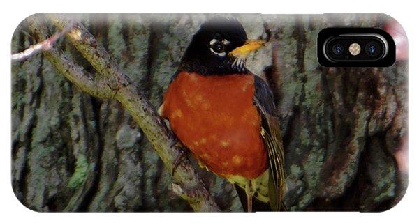 Michigan State Bird Robin IPhone Case