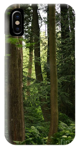 IPhone Case featuring the photograph Michigan Woods by Linda Shafer