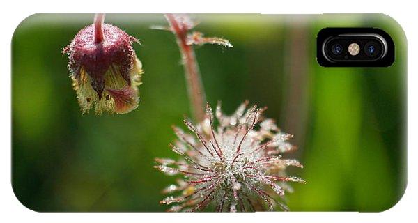Little Things iPhone Case - Microcosm Of Beauty by Jeff Swan