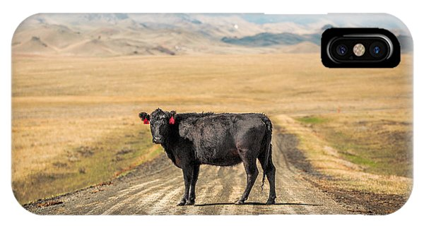Cow iPhone Case - Middle Of The Road by Todd Klassy