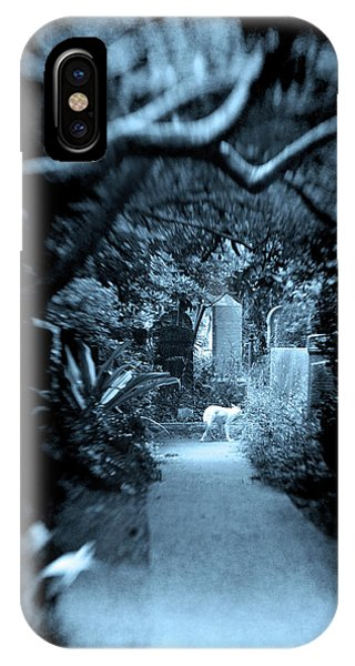 Midnight In The Garden O IPhone Case