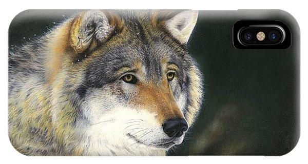 Midwinter Sunrise IPhone Case