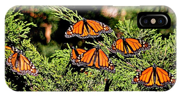 IPhone Case featuring the photograph Migrating Monarchs by AJ Schibig