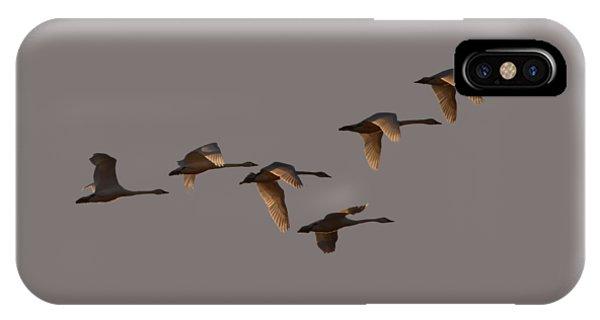 Migrating Swans IPhone Case