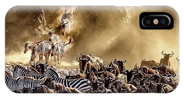 Migration Crossing Drama IPhone Case