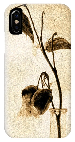 IPhone Case featuring the photograph Milk Weed In A Bottle by Bob Orsillo