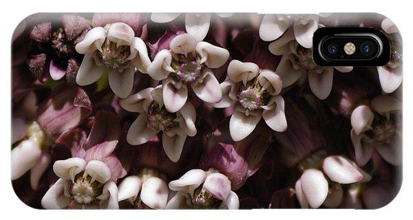 Milkweed Florets IPhone Case