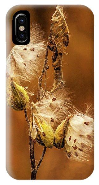 Horicon Marsh iPhone Case - Milkweed by Mark Fuge
