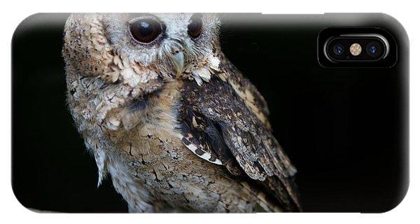 Minature Owl IPhone Case