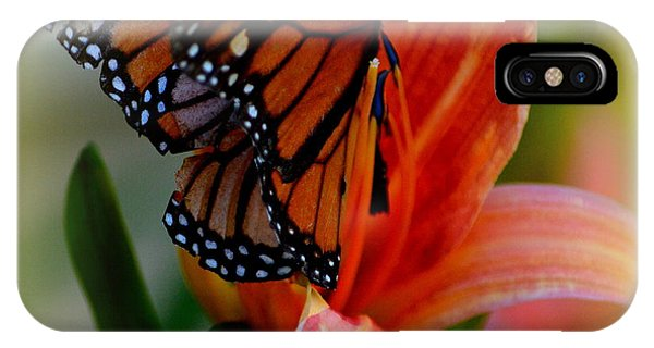 Mingle With A Monarch IPhone Case
