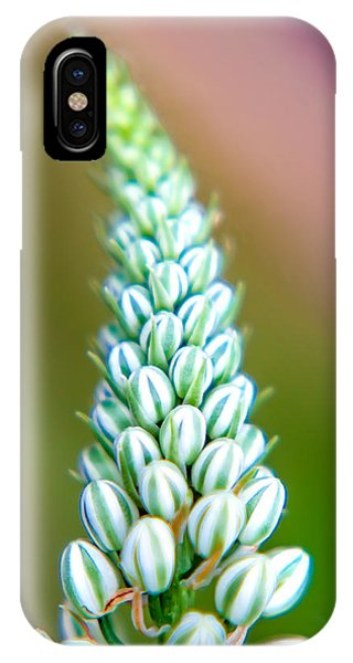 Fall Flowers iPhone Case - Mini Melons by Az Jackson
