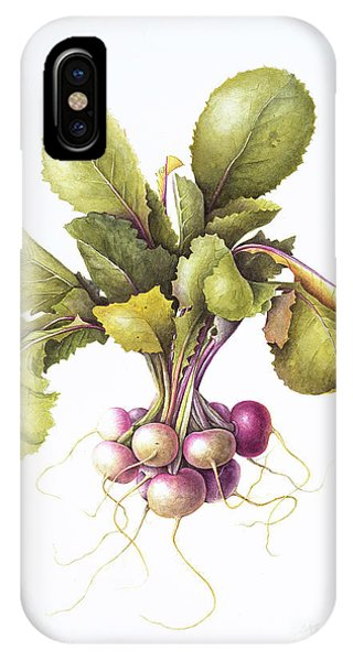 Organic Foods iPhone Case - Miniature Turnips by Margaret Ann Eden