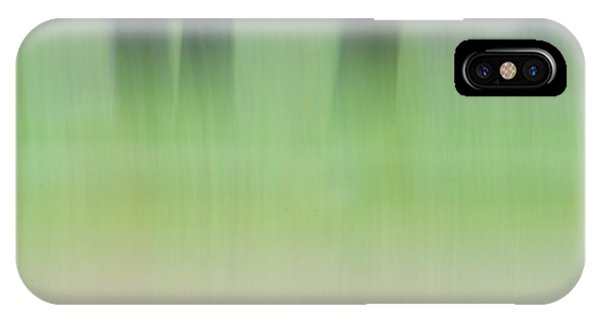 Mint Slice IPhone Case