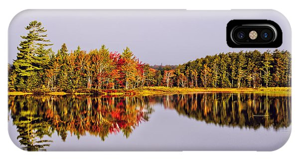 Mirror Of Beauty IPhone Case