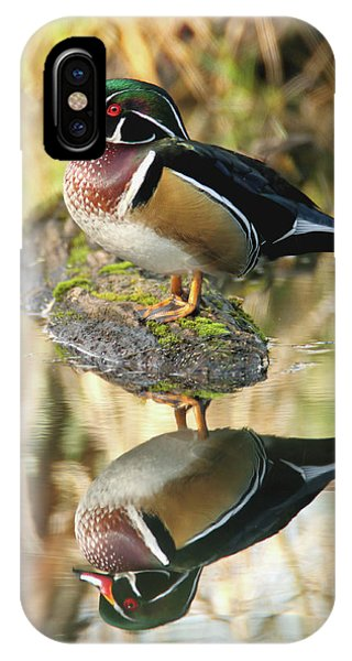 Mirrored Wood Duck IPhone Case