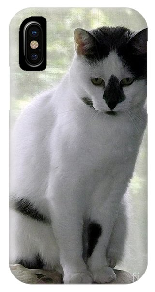 Miss Jerrie Cat With Watercolor Effect IPhone Case