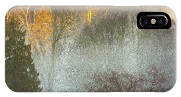 Mist In The Park IPhone Case