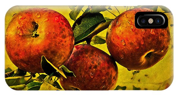 Mister's Apples IPhone Case