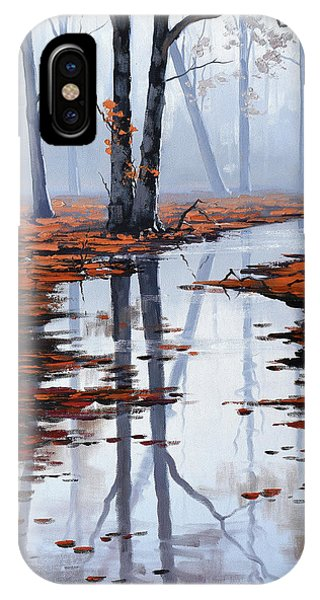 Amber iPhone Case - Misty Autumn Colors by Graham Gercken