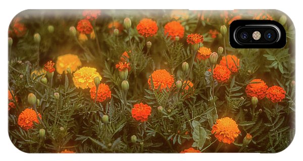 IPhone Case featuring the photograph Misty Marigolds by John Brink