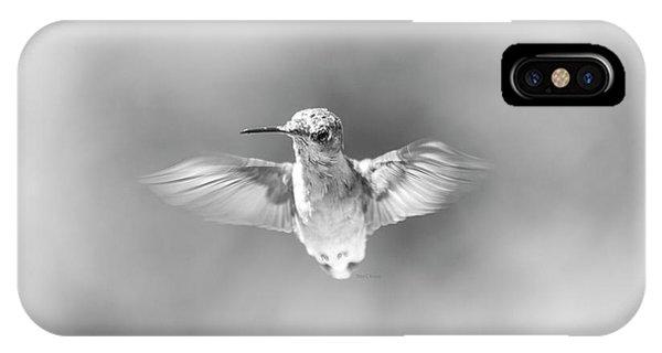 Beautiful Hummingbird iPhone Case - Misty Morning Hummingbird by Betsy Knapp