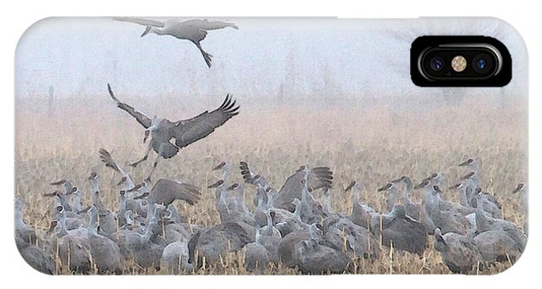 Misty Morning Nebraska Landing IPhone Case