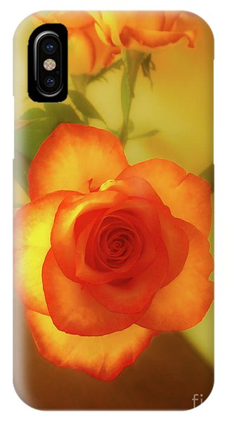 Misty Orange Rose IPhone Case