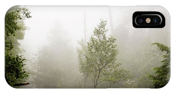Misty Road At Forest Edge, Pocono Mountains, Pennsylvania IPhone Case