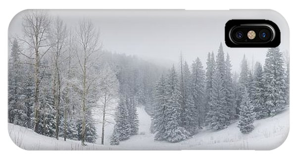 Misty Winter Panorama IPhone Case