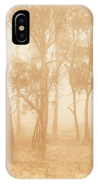 Gloomy iPhone Case - Misty Woods by Jorgo Photography - Wall Art Gallery