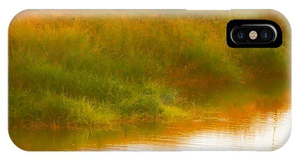 Misty Yellow Hue -lone Jacana IPhone Case