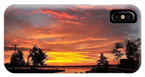 Mitchell State Park Cadillac Michigan IPhone Case