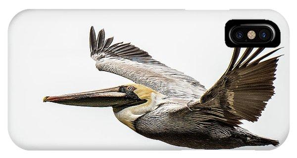 Mobile Bay Pelican IPhone Case