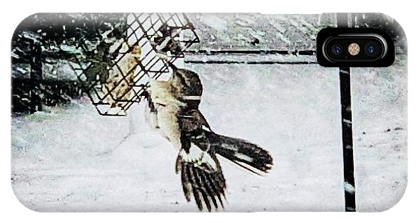 IPhone Case featuring the photograph Mockingbird by Donald Paczynski