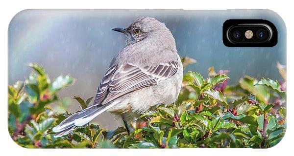 Mockingbird Rainbow IPhone Case