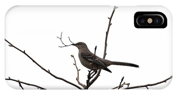 Mockingbird With Twig IPhone Case