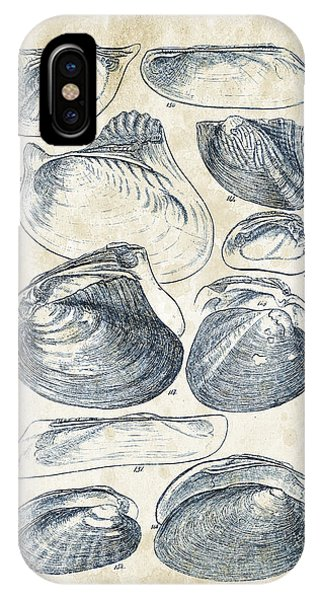 Mollusks - 1842 - 08 IPhone Case