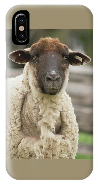 Moma Sheep IPhone Case
