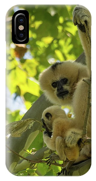 Mommy Gibbon IPhone Case