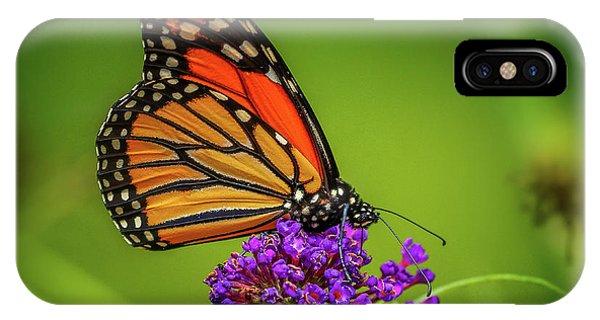 Monarch #1 IPhone Case