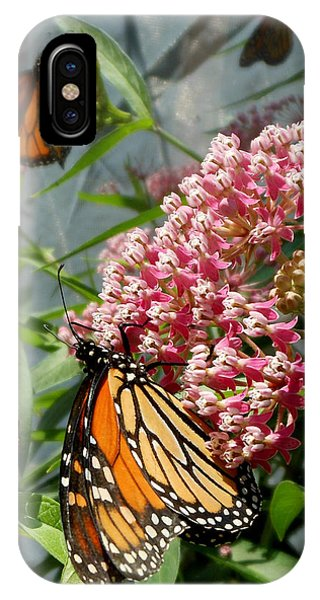Monarch Arc IPhone Case