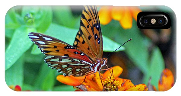 Monarch Butterfly Resting IPhone Case