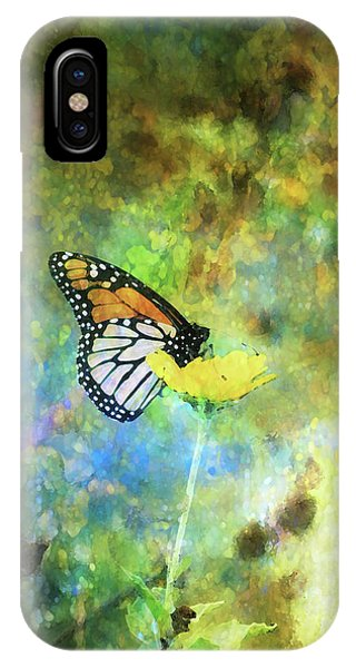 Monarch In Azure And Gold 5647 Idp_2 IPhone Case