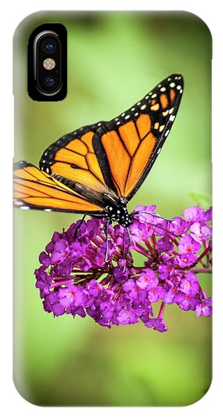 IPhone Case featuring the photograph Monarch Moth On Buddleias by Carolyn Marshall