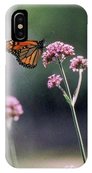 Monarch No. 7-1 IPhone Case